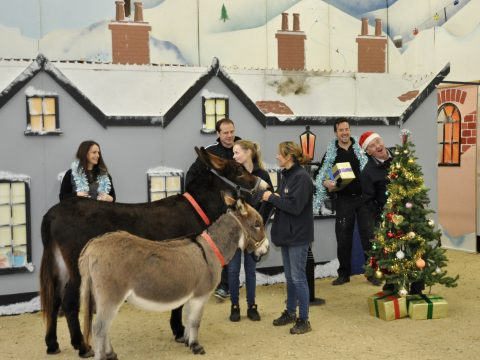 Sign makers donate 50 hours of labour to The Donkey Sanctuary image 1